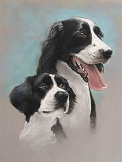 Two Dogs Portrait