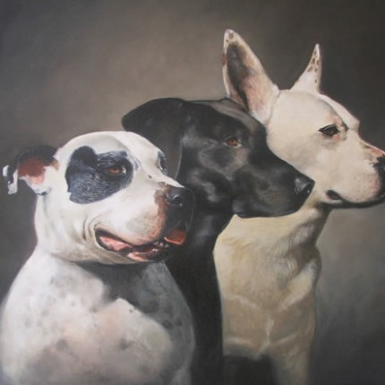 Three Dogs Portrait